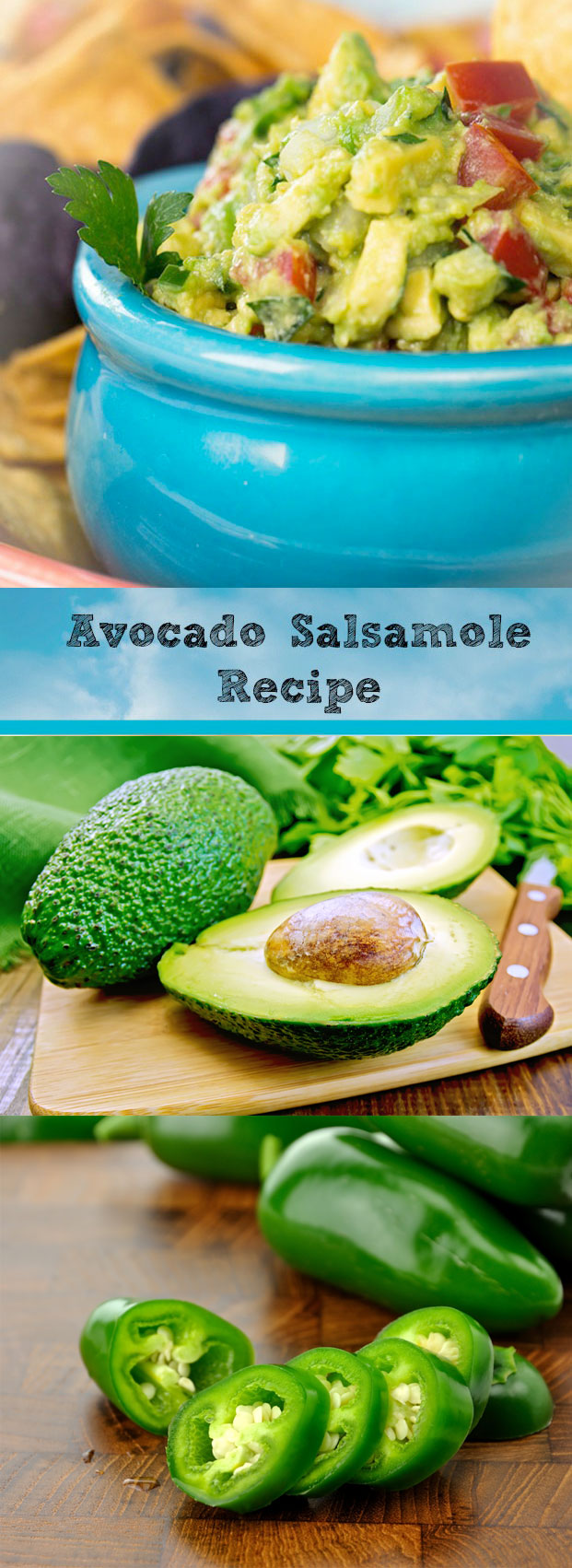 Guacamole Recipe : Avocado Salsamole Recipe