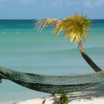 Win a Trip to Jamaica courtesy of Hoodwinked Too!