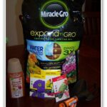 Our At Home Lorax Experience with Miracle-Gro® Expand 'n Gro™
