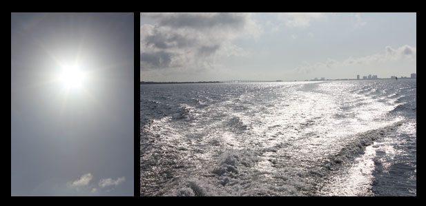 dolphin cruise pensacola beach