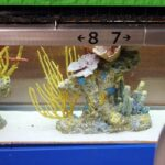 Family Fun At Marlins Park (The BallPark with the Fish Tank!)