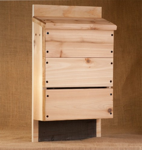 Fun diy projects to include the kids in for How to make a bat house