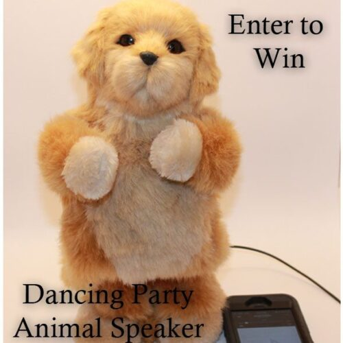 dancing-party-animal-win