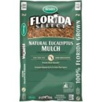 How To Prepare Your Lawn for Spring with Scotts Florida Select Mulch