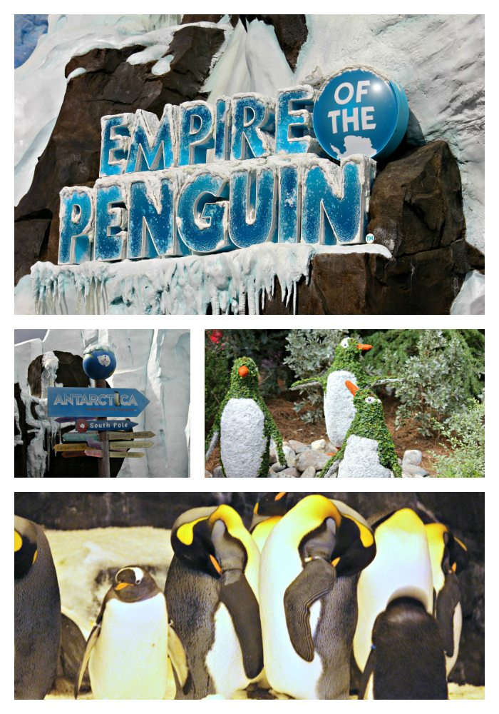 empire-of-the-penguins