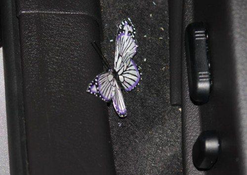 pbutterfly