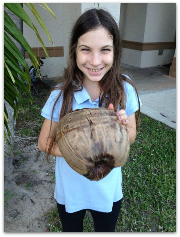 Check out the coconut!