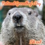Happy Groundhog's Day February 2nd