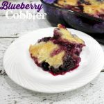 Florida Blueberry Cobbler Recipe