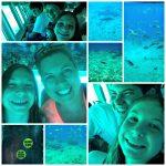 Submerged in Cozumel with Sunbelt Bakery