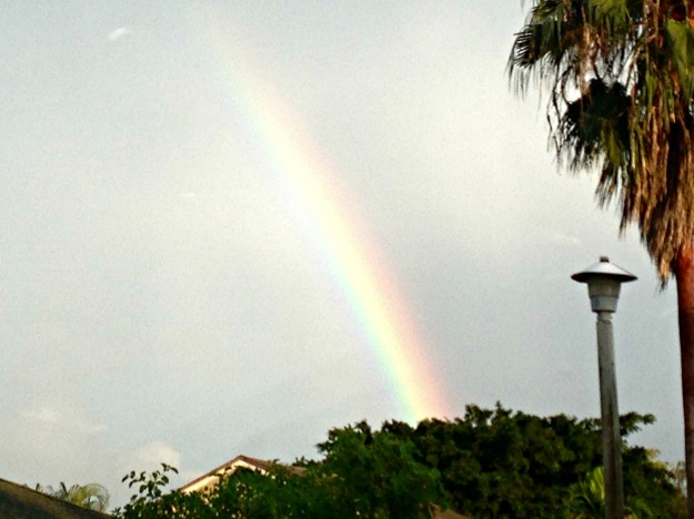 rainbows-florida-03