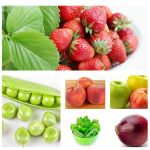 The Best Fruits and Vegrtables to Plant in the Spring