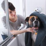 Sterling Prevail Shower Door with ComforTrack