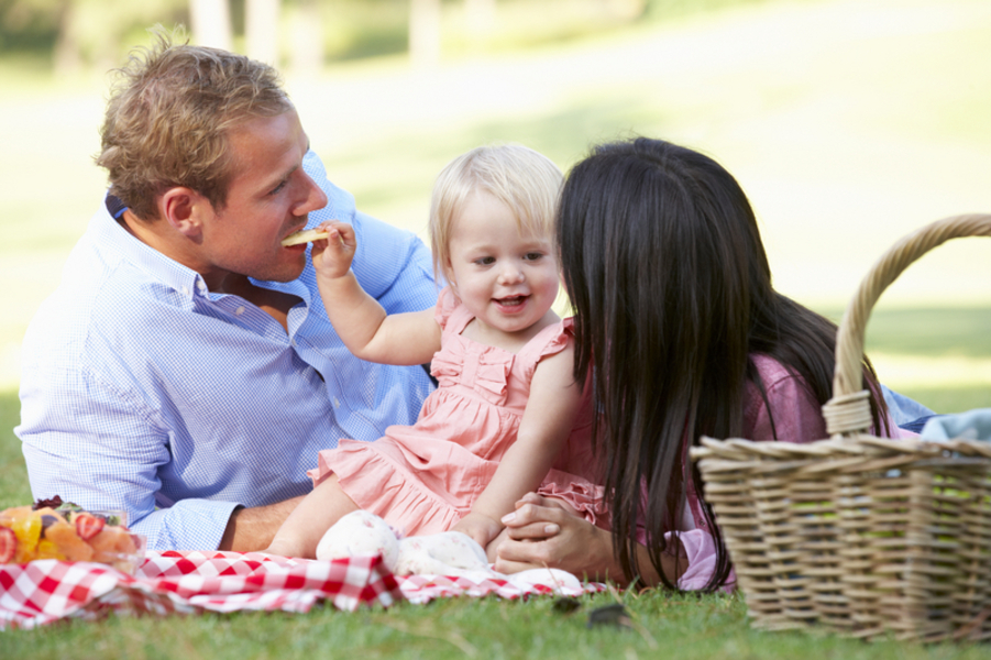 Family Enjoying Picnic Together