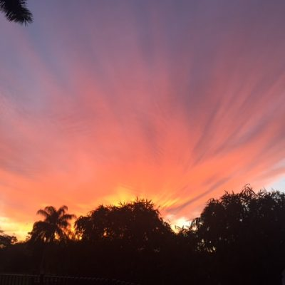 The Beauty of the South Florida Sky