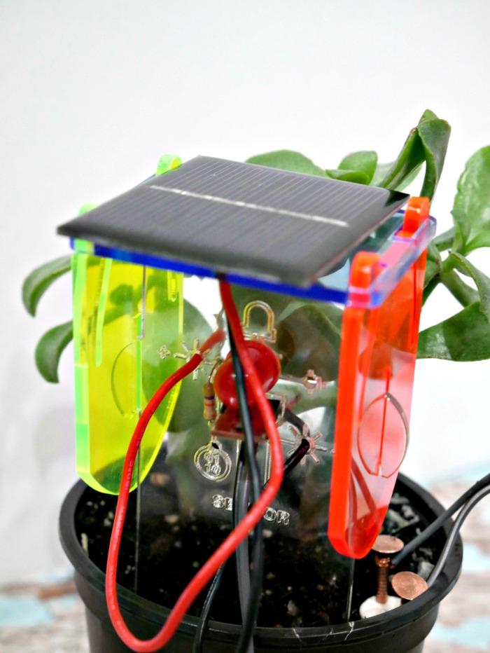 DIY-Thirsty-Plant-Kit-5