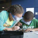 Tips for Preventing the Summer Slide & promote STEM activities
