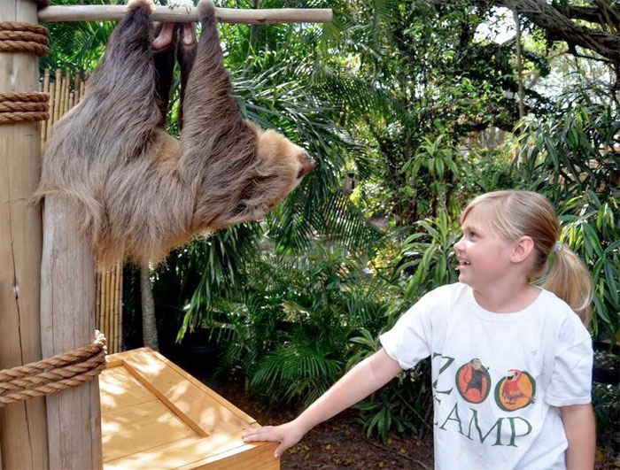 Palm Beach Zoo Events August 2016