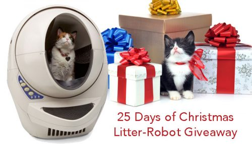 liltter-robot-give