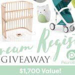 Dream Registry Giveaway $1,700 Value: (Ends 12/14)