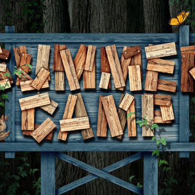 Summer Vacation: This One's for the Kids