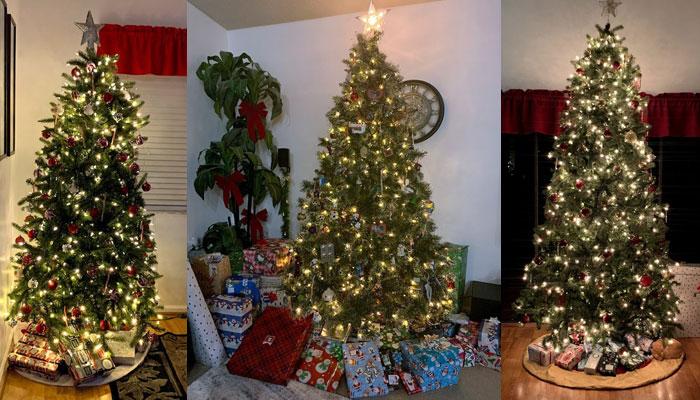 🎶 Three Christmas Trees and…🎶